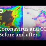 Coronavirus leads to decrease in CO2 emissions: Can it last?   DW News