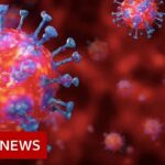 Coronavirus: deaths rates double to highest in 20 years – BBC News