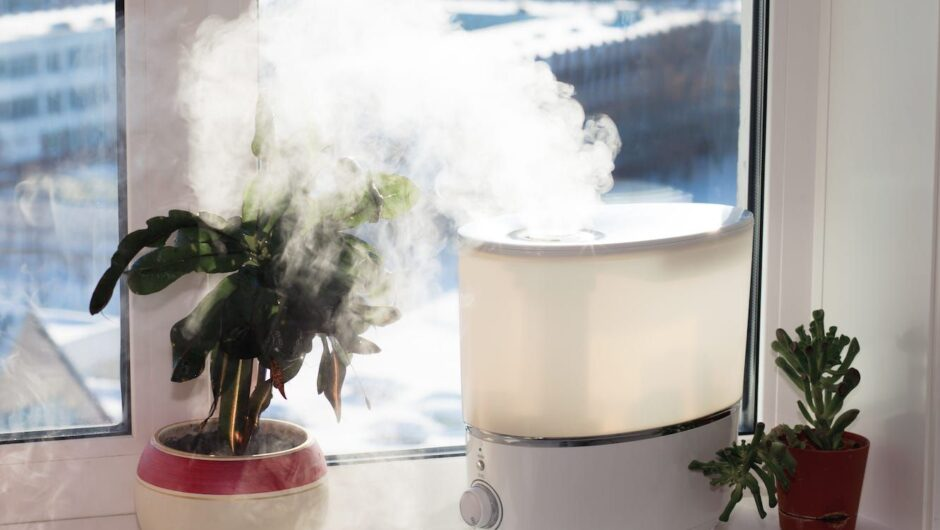 Using a humidifier in your home this winter could lower the risk of coronavirus transmission and give your immune system a leg up