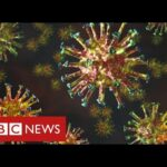 "New mutated coronavirus from South Africa is ""highly concerning"" – BBC News"