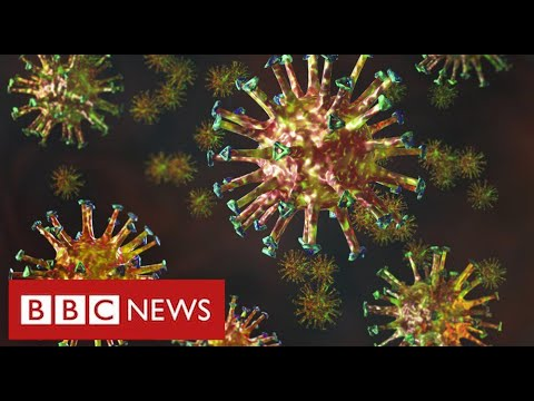 """New mutated coronavirus from South Africa is """"highly concerning"""" – BBC News"""
