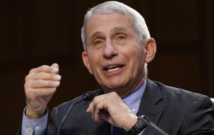 Fauci shows exasperation with Rand Paul in COVID-19 hearing: 'Here we go again…'